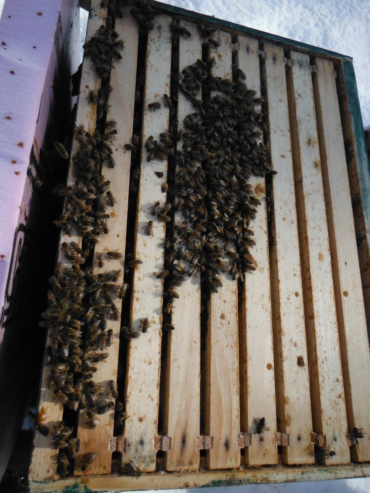 Still buzzing :)