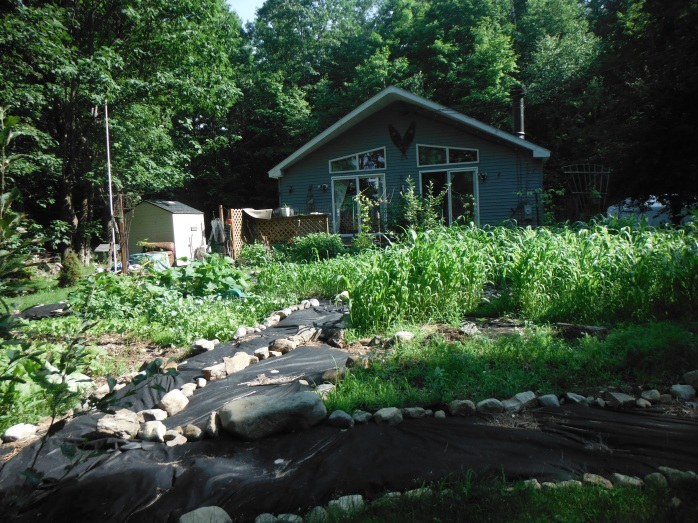 BE GOOD little homestead!