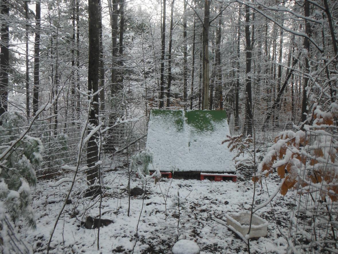 A-frame coop