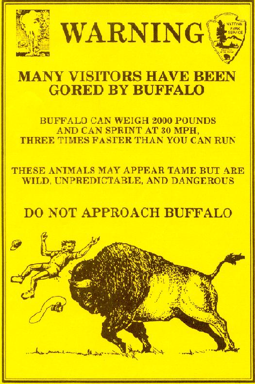 buffalo-warning2
