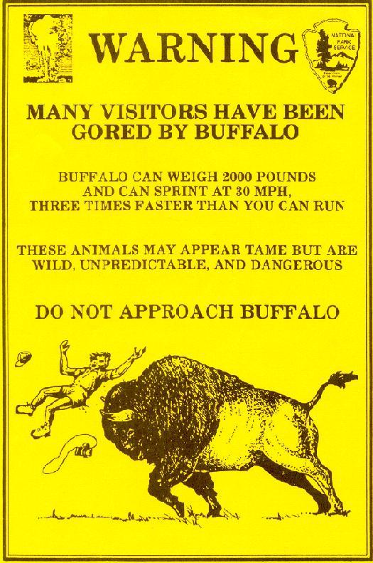 buffalo-warning2