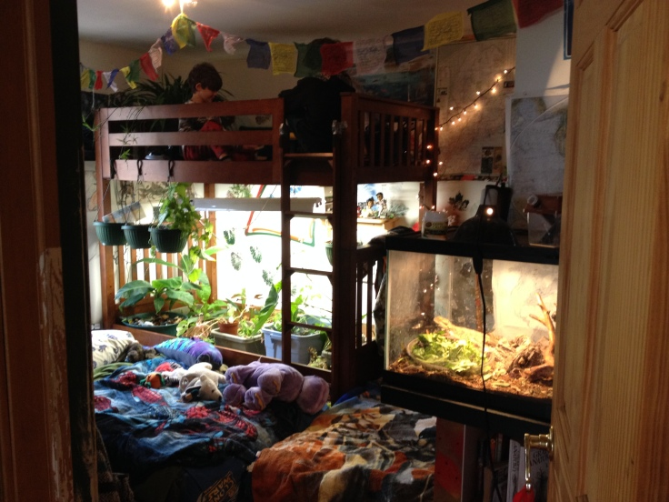 The boy's indoor bunk bed jungle/secret hideout.